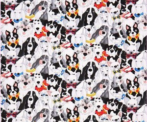 background, dog, and animal image