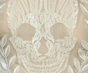 skull and fashion image