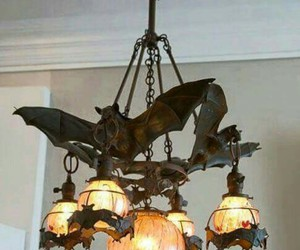 bats, chandelier, and decor image