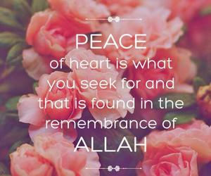 allah, heart, and muslim image