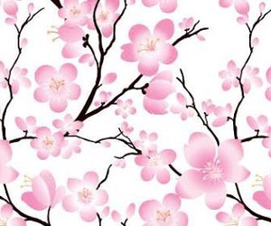 blossom, floral, and pattern image
