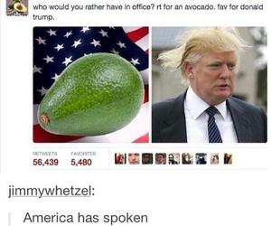 america, epic fail, and donald trump image