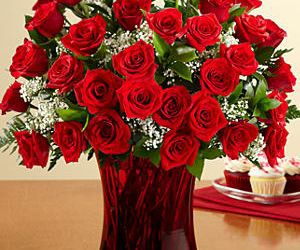 red roses, roses red, and red and white roses image