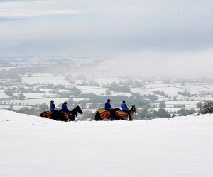 england, horses, and snow image