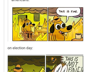 elections, funny, and Hillary Clinton image