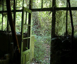 abandoned, green, and places image