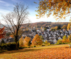 germany, nature, and travel image