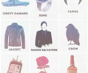 the vampire diaries, ian somerhalder, and damon salvatore image
