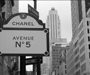 follow, blackandwhite, and chanel image