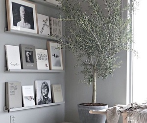 grey, inspo, and plant image