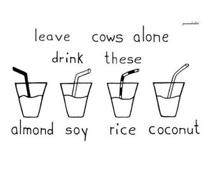 milk and vegan image