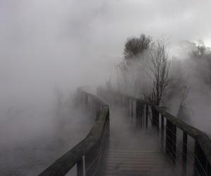 pale, fog, and grunge image