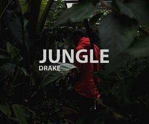 Drake, jungle, and theme image