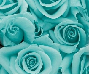 flowers, summer, and turquoise image