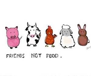 vegan, veganism, and food image