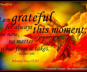 fall, gratitude, and thanksgiving image