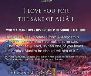 Brotherhood, islam, and muslim love image