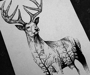 art, forest, and reindeer image