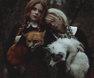 animals, blonde, and forest image