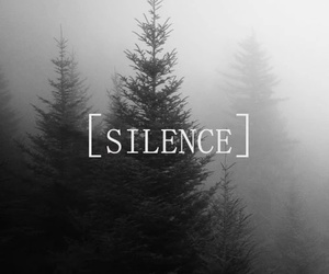 silence, forest, and tree image