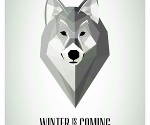 alternative, cold days, and winter is coming image
