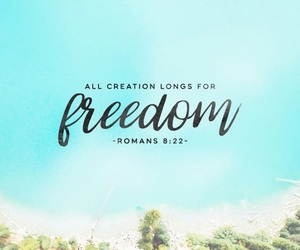 creation, freedom, and jesus image