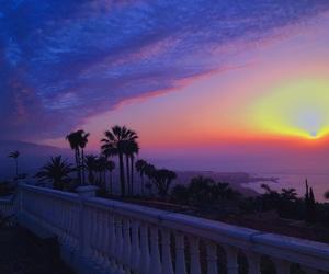 girl, palm trees, and sunrise image