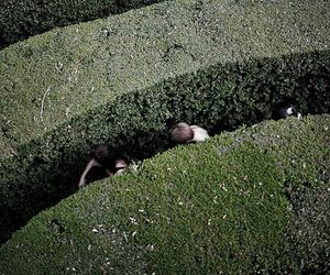 maze, aesthetic, and garden image