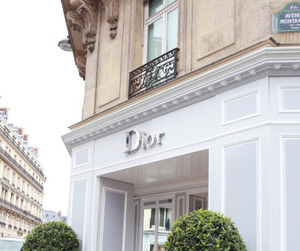 chic, classy, and dior image