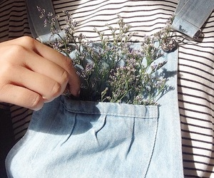flowers, aesthetic, and theme image