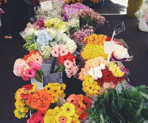 flowers and colorful image