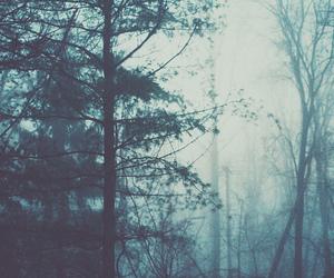 Image by volocean