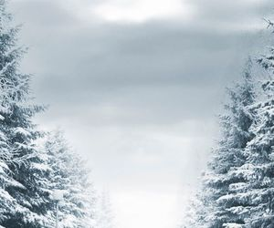 background, snow, and white image