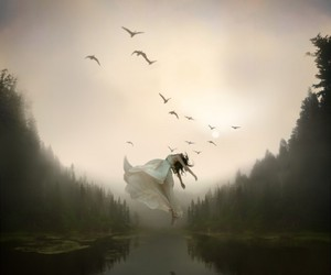 girl, birds, and fly image