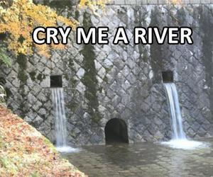 funny, cry, and river image