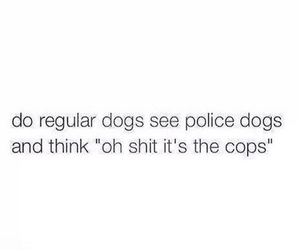 funny, dog, and cops image