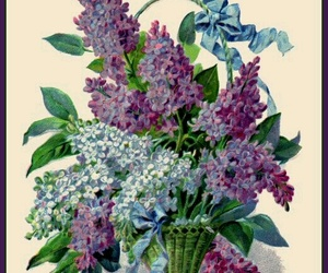 flower, lilac, and meaning image