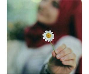 beauty, محجبات, and حجاب image