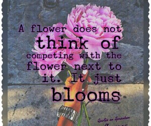 bloom, quote, and think image
