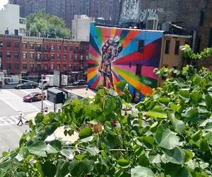 new york, ny, and high line park image
