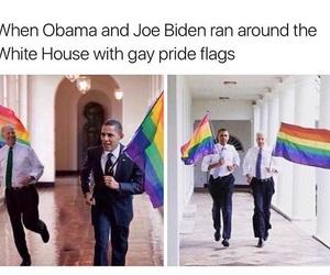 obama and pride image