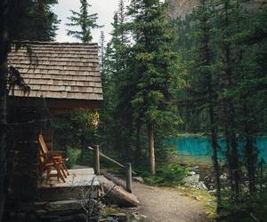 cabin, forest, and nature image