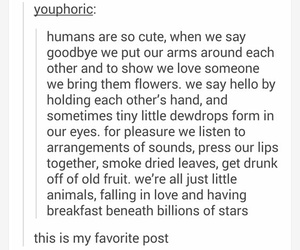 tumblr, humans, and life image