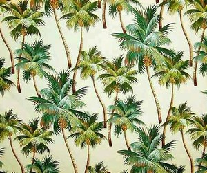 50s, wallpaper, and tropical image