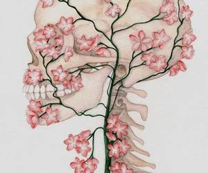 flowers, skull, and art image