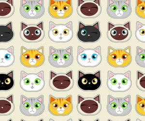 background, cat, and pattern image