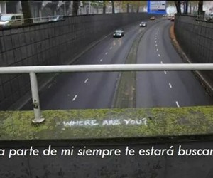 amor, autos, and frases image