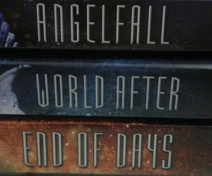 books, end of days, and angelfall image