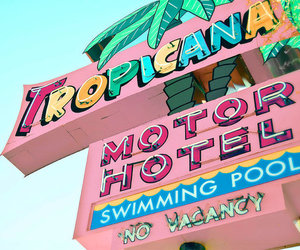 pink, hotel, and tropicana image