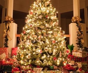 christmas, xmas, and christmas tree image